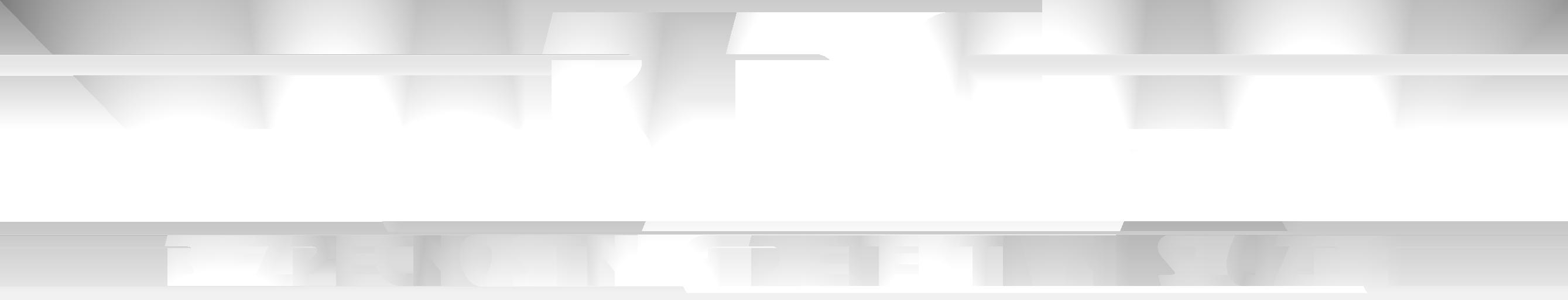 bezpečnostní agentura Defender Brokers